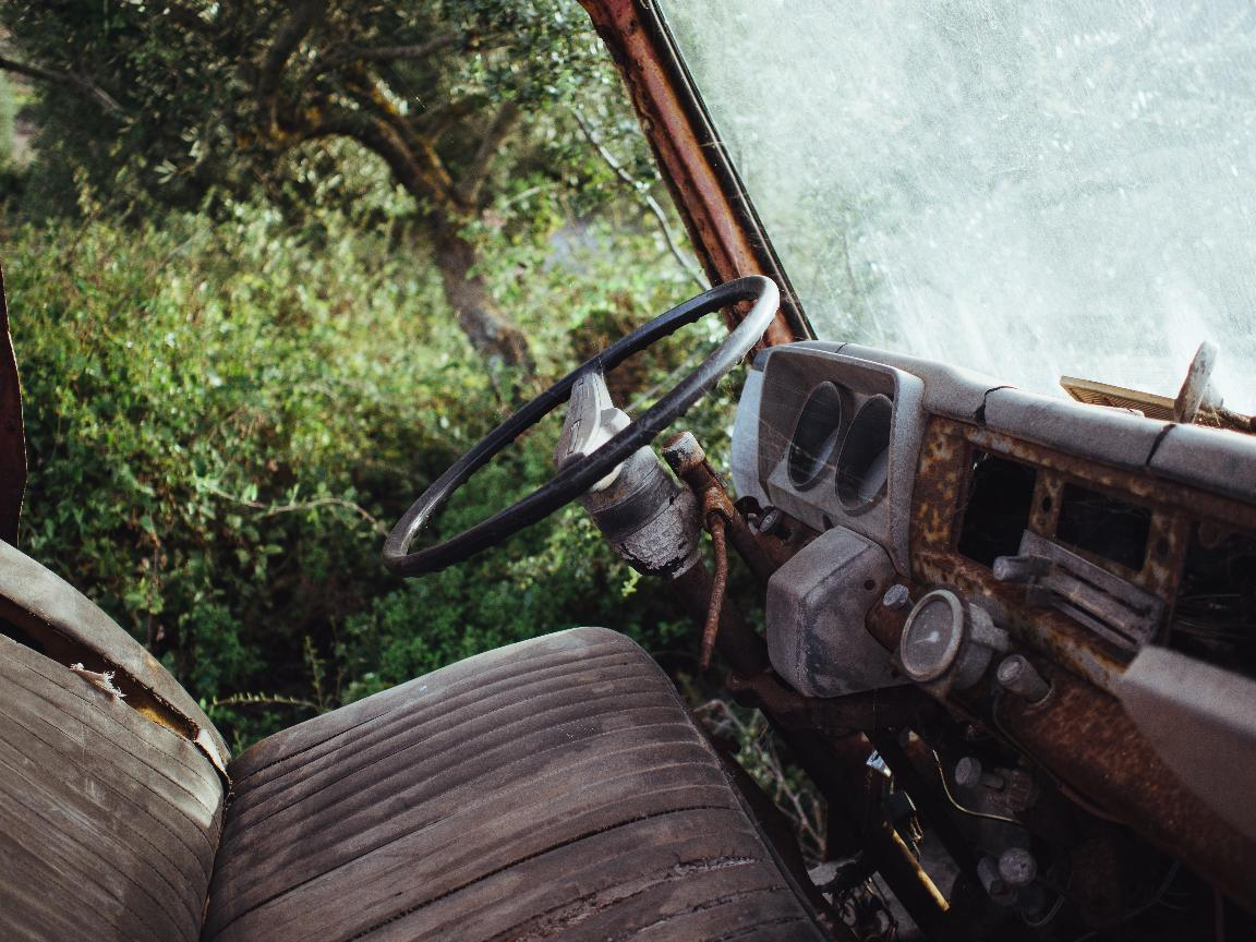 Photo of the rusted interior of an old car. Cobwebs lie stretched across its black steering wheel. Through the lack of a door, lush forest vegetation can be seen.