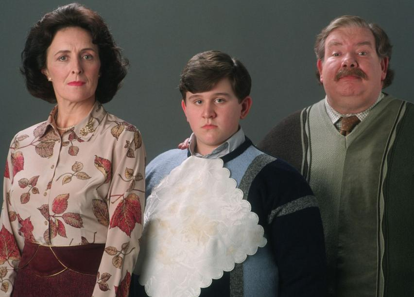 The Dursleys stand for a photo: Petunia, Dudley, and Vernon, looking their normal best.